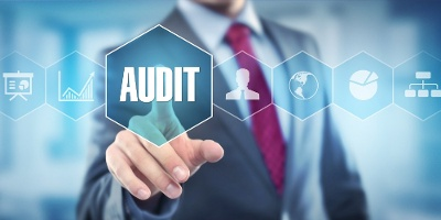 Audit Services, Counter Fraud and Well Led Review Framework